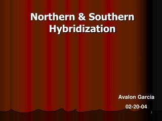Northern & Southern Hybridization