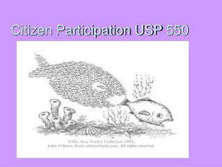 Citizen Participation USP 550