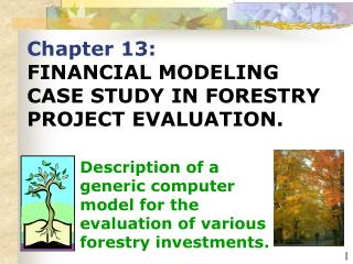 Chapter 13: FINANCIAL MODELING CASE STUDY IN FORESTRY PROJECT EVALUATION.