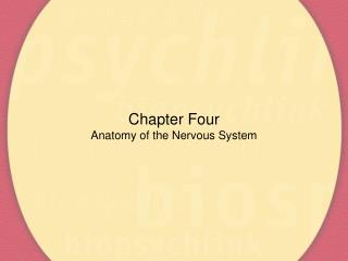Chapter Four Anatomy of the Nervous System