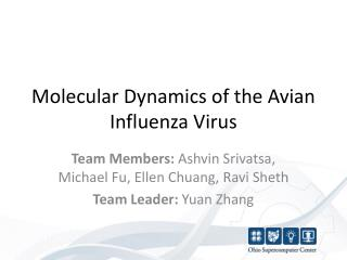 Molecular Dynamics of the Avian Influenza Virus