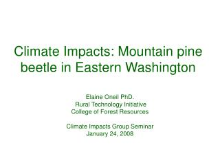 Climate Impacts: Mountain pine beetle in Eastern Washington
