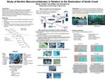 Study of Benthic Macroinvertebrates in Relation to the Restoration of Smith Creek Reese Voshell, Tara Willey, and Amy Br