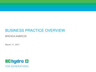 BUSINESS PRACTICE OVERVIEW