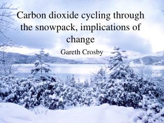 Carbon dioxide cycling through the snowpack, implications of change