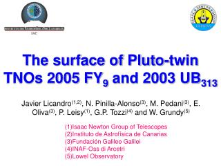 The surface of Pluto-twin TNOs 2005 FY 9  and 2003 UB 313