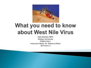 What you need to know about West Nile Virus