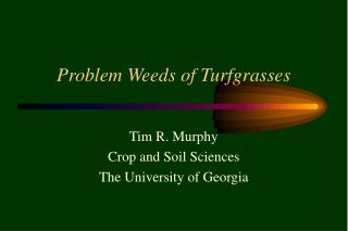 Problem Weeds of Turfgrasses