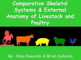 Comparative Skeletal Systems & External Anatomy of Livestock and Poultry