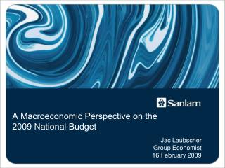 A Macroeconomic Perspective on the 2009 National Budget