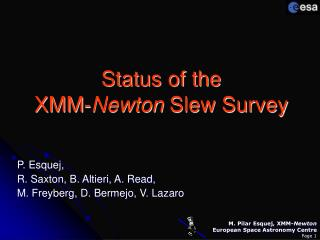 Status of the  XMM- Newton  Slew Survey