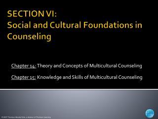 SECTION VI:    Social and Cultural Foundations in Counseling