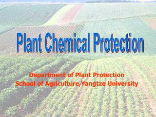 Plant Chemical Protection