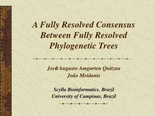 A Fully Resolved Consensus Between Fully Resolved Phylogenetic Trees