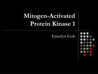 Mitogen-Activated Protein Kinase 1