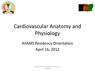 Cardiovascular Anatomy and Physiology