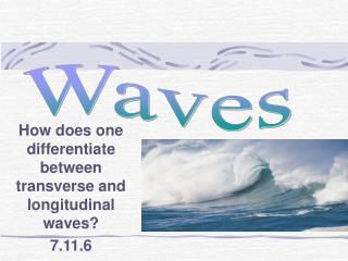 How does one differentiate between transverse and longitudinal waves? 7.11.6