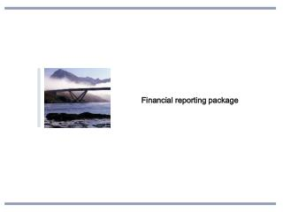 Financial reporting package