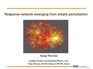 Response network emerging from simple perturbation