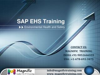sap ehs online training USA,UK and Canada