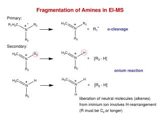 Fragmentation of Amines in EI-MS