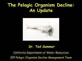 Dr. Ted Sommer