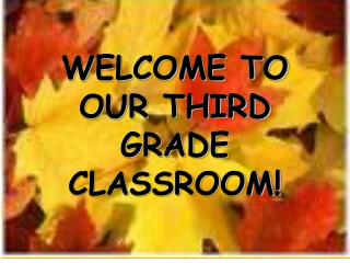 WELCOME TO OUR THIRD GRADE CLASSROOM!