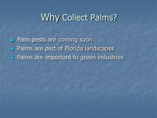 Why  Collect Palms?