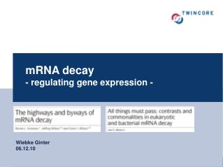 mRNA decay - regulating gene expression -