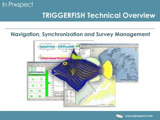 TRIGGERFISH Technical Overview