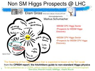 Non SM Higgs Prospects @ LHC