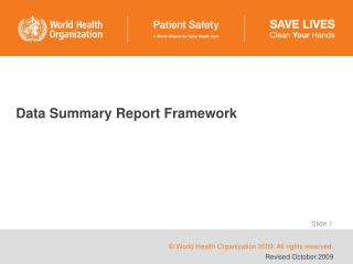 Data Summary Report Framework