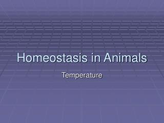 Homeostasis in Animals