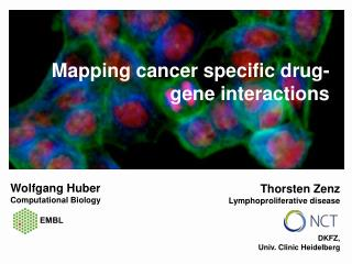 Mapping cancer specific drug-gene interactions