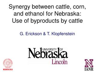 Synergy between cattle, corn, and ethanol for Nebraska: Use of byproducts by cattle