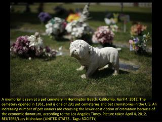 Beloved pets find final resting place