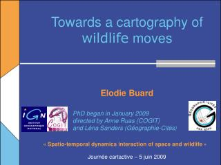Towards a cartography of  wildlife  moves