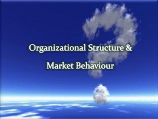 Organizational Structure & Market Behaviour
