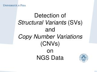 Detection of  Structural Variants  (SVs)  and  Copy Number Variations  (CNVs)  on  NGS Data
