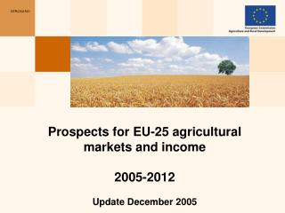 Prospects for EU-25 agricultural markets and income 2005-2012  Update December 2005
