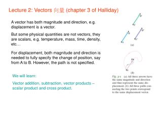Lecture 2: Vectors  向量  (chapter 3 of Halliday)