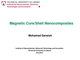 Magnetic Core/Shell Nanocomposites