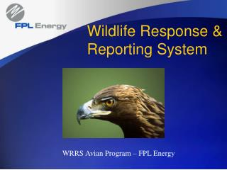 Wildlife Response & Reporting System