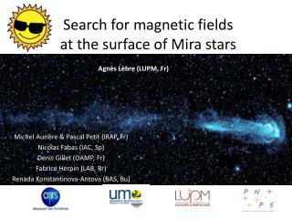 Search for magnetic fields  at the surface of Mira stars
