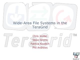 Wide-Area File Systems in the TeraGrid