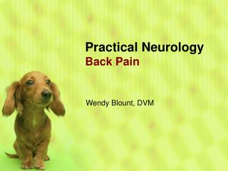 Practical Neurology Back Pain