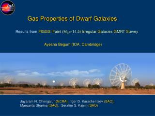 Gas Properties of Dwarf Galaxies