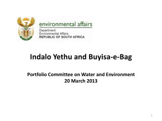 Indalo Yethu and Buyisa-e-Bag Portfolio Committee on Water and Environment 20 March 2013