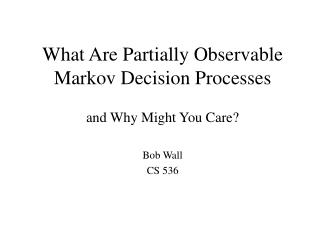 What Are Partially Observable Markov Decision Processes
