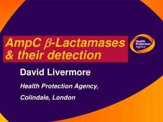 AmpC  b -Lactamases & their detection